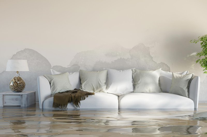 Water halfway up couch in a home