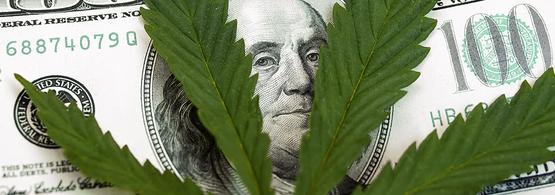 marijuana funded