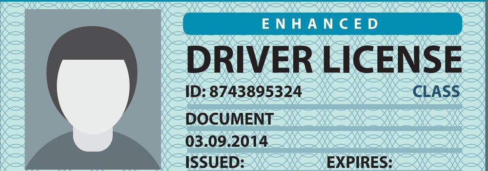 driver-license-vector-2726708.jpg