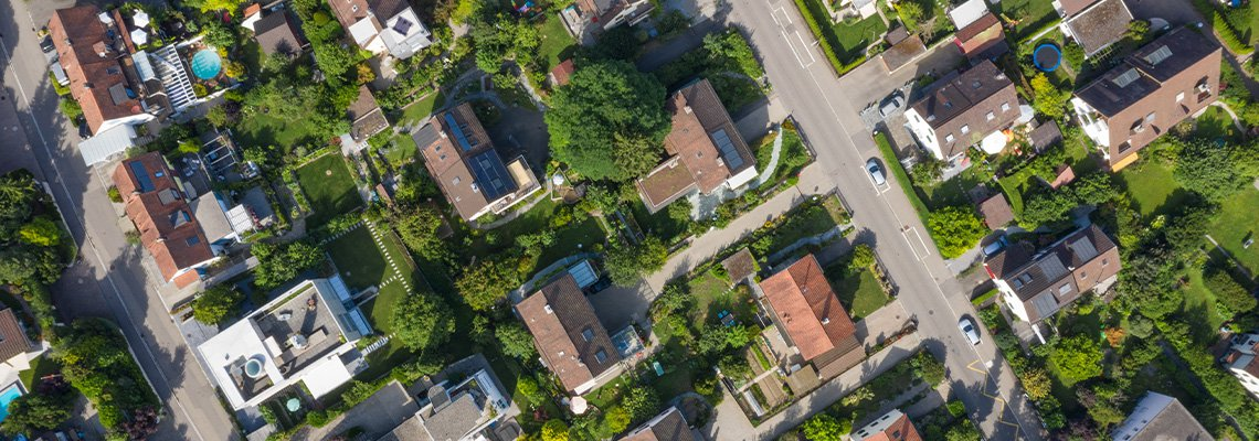 Neighborhood birds eye view