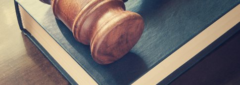 Gavel resting on top of a book