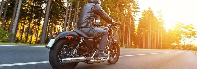 Person riding motorcycle on road surrounded by tall trees