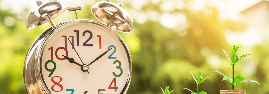 Clock and Mini Plants