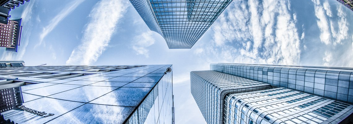 Reasonable Compensation vs Shareholder Distributions