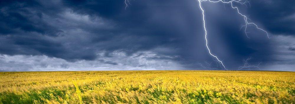Lightning Storm Over Yellow Field