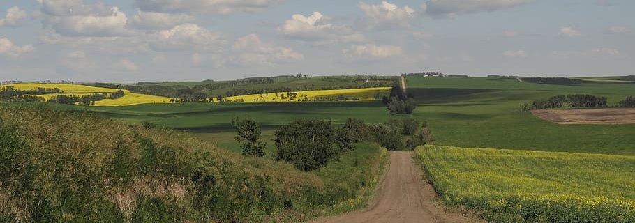 country-road.jpg