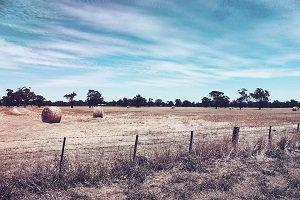 fence-sm.jpg