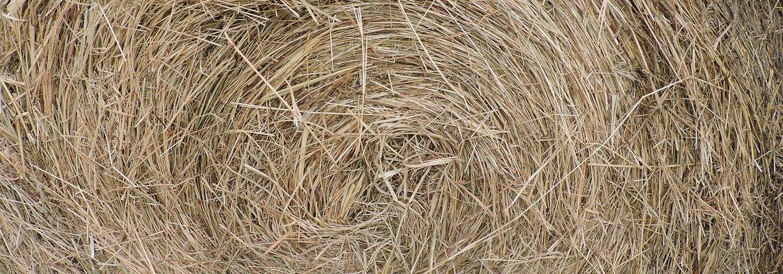 hay-bale-closeup.jpg