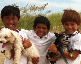 Three young boys standing next to each other smiling and holding two dogs