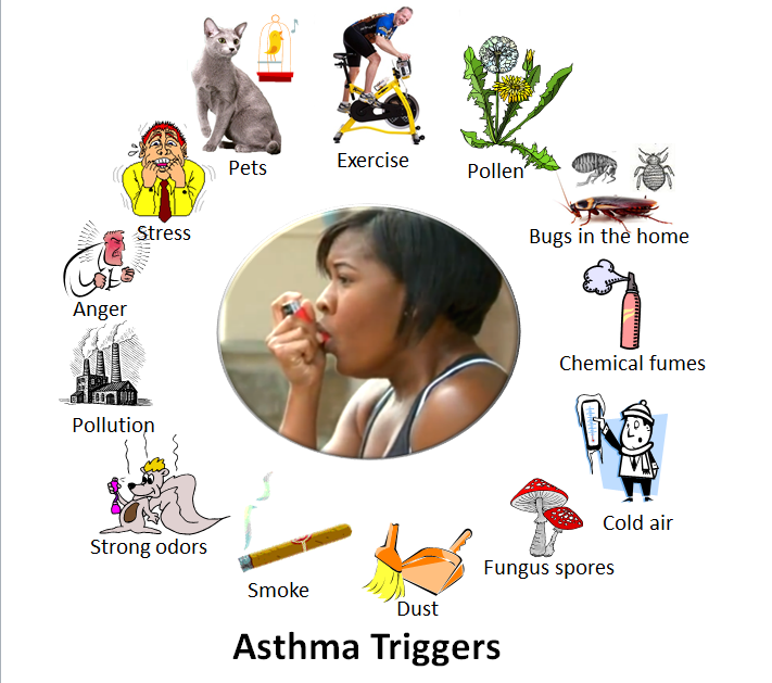 asthma trigger graphics surrounding woman with inhaler