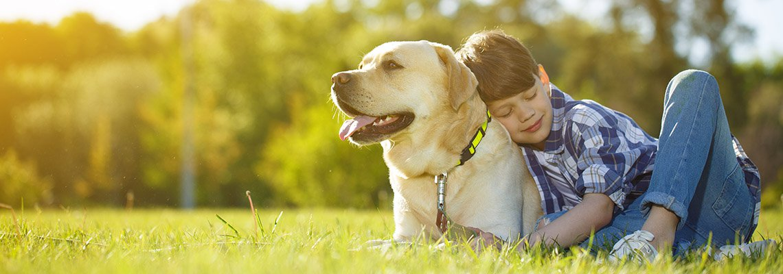 A young boy lays with his large dog outside