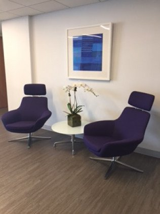 Ron Meyers Office chairs