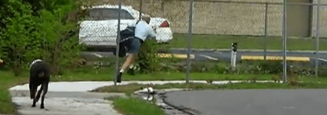 Dog chasing mail man