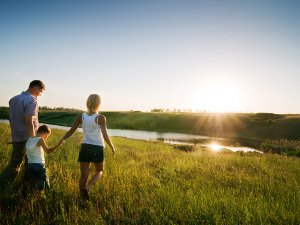 Family walking and holding hands in a field with a sunset in the background