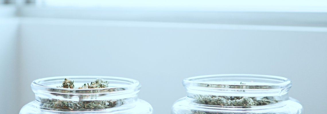 glass jars of marijuana
