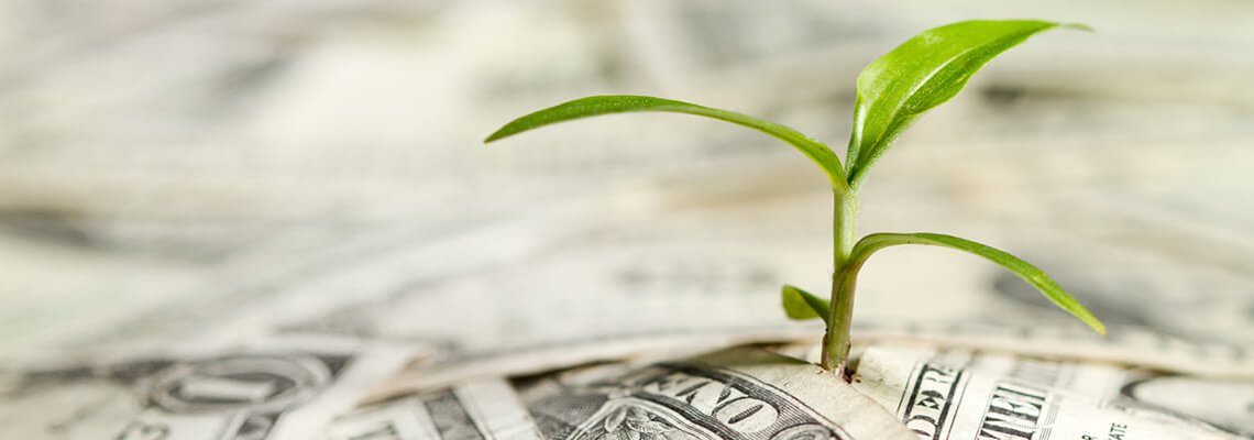 Plant Growing From Cash