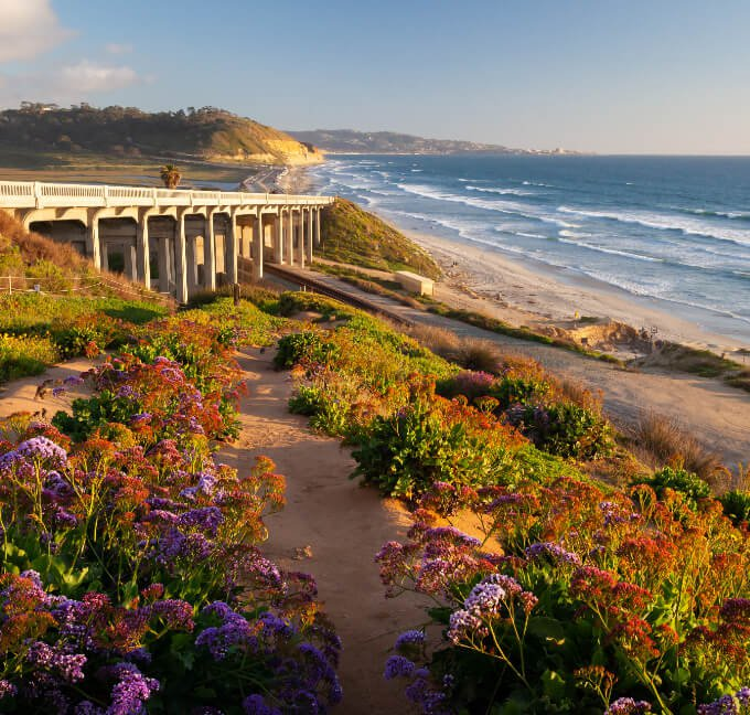 Torrey Pines beach in San Diego, California