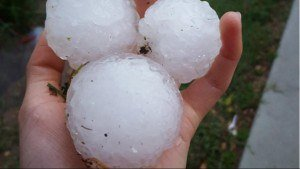 Three pieces of hail being held in a hand