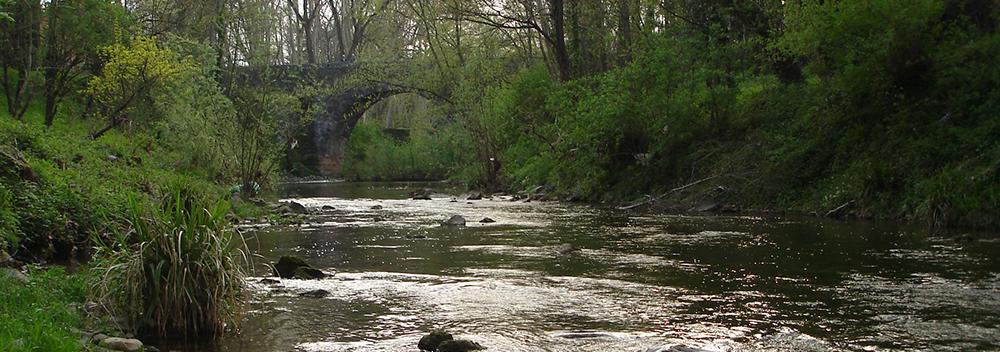 River Fluvia