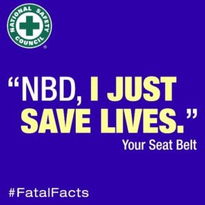 seat-belt-300x300.jpg